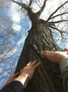 universal oneness Sex abuse healing retreat.