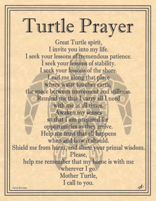 Turtle prayer by Travis Bowman