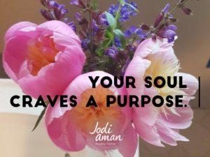 your soul craves a purpose
